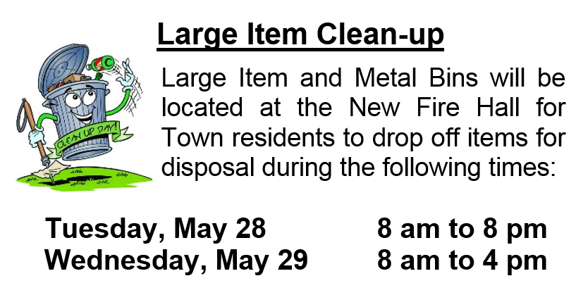 Large Item Cleanup 2019 @ Hague Town Shop